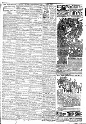 The Algona Republican from Algona, Iowa on February 18, 1891 · Page 6