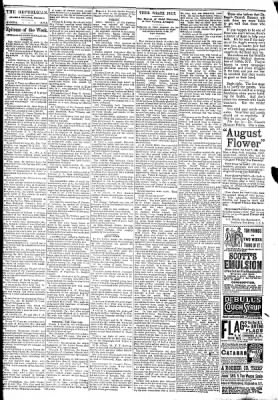 The Algona Republican from Algona, Iowa on March 25, 1891 · Page 6