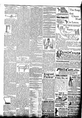 The Algona Republican from Algona, Iowa on July 29, 1891 · Page 3