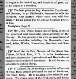 The Kansas Chief from Troy, Kansas on September 9, 1880 · Page 3