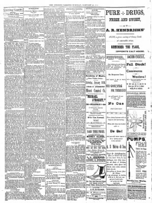 Sterling Daily Gazette from Sterling, Illinois on January 10, 1888 · Page 2