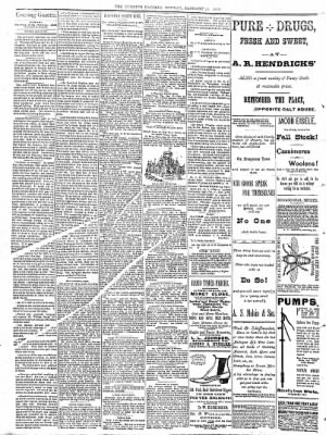Sterling Daily Gazette from Sterling, Illinois on January 16, 1888 · Page 2