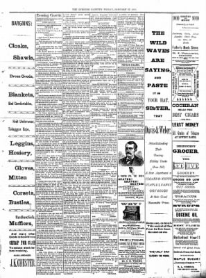 Sterling Daily Gazette from Sterling, Illinois on January 27, 1888 · Page 3