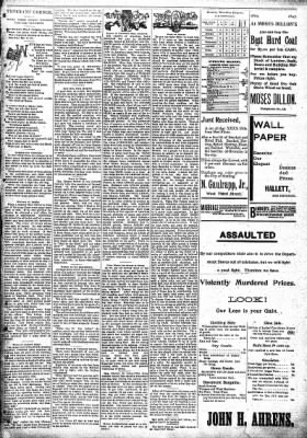 Sterling Standard from Sterling, Illinois on March 11, 1897 · Page 7