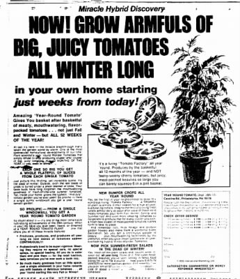 The Brazosport Facts from Freeport, Texas on November 23, 1975 · Page 73