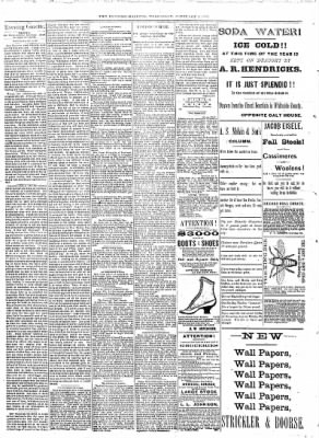 Sterling Daily Gazette from Sterling, Illinois on February 8, 1888 · Page 2