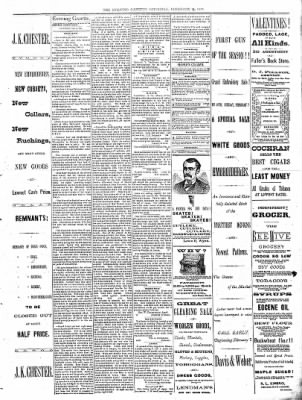 Sterling Daily Gazette from Sterling, Illinois on February 11, 1888 · Page 3
