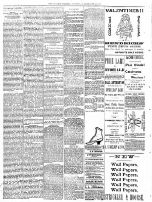 Sterling Daily Gazette from Sterling, Illinois on February 15, 1888 · Page 2