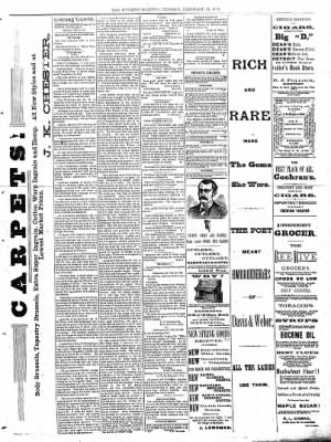 Sterling Daily Gazette from Sterling, Illinois on February 27, 1888 · Page 3
