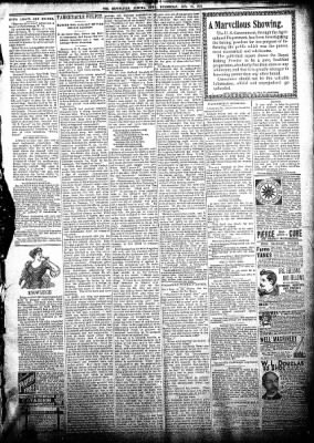The Algona Republican from Algona, Iowa on August 22, 1894 · Page 3