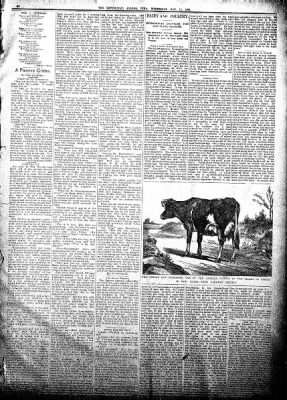 The Algona Republican from Algona, Iowa on November 14, 1894 · Page 7