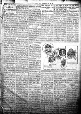 The Algona Republican from Algona, Iowa on December 19, 1894 · Page 3
