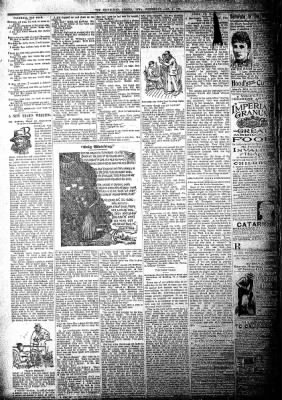 The Algona Republican from Algona, Iowa on January 2, 1895 · Page 2