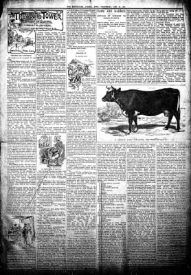 The Algona Republican from Algona, Iowa on January 23, 1895 · Page 3