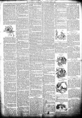 The Algona Republican from Algona, Iowa on June 19, 1895 · Page 3