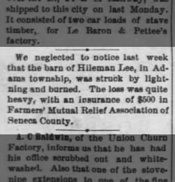 The Tiffin Tribune from Tiffin, Ohio on August 20, 1874 · Page 3