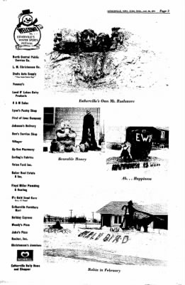 Estherville Daily News from Estherville, Iowa on January 30, 1973 · Page 15