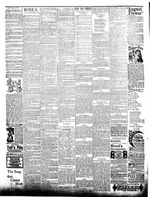 The Postville Review from Postville, Iowa on August 29, 1891 · Page 4