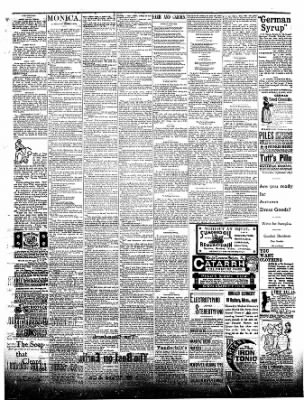 The Postville Review from Postville, Iowa on September 19, 1891 · Page 4