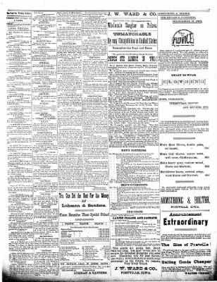 The Postville Review from Postville, Iowa on November 21, 1891 · Page 3