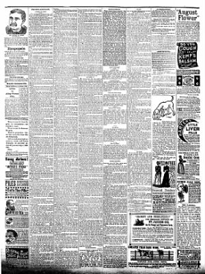 The Postville Review from Postville, Iowa on April 16, 1892 · Page 4