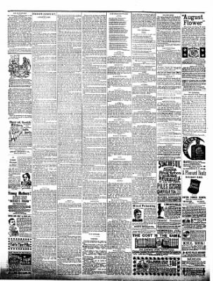 The Postville Review from Postville, Iowa on June 11, 1892 · Page 4