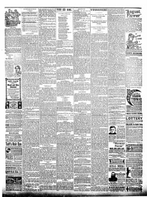 The Postville Review from Postville, Iowa on July 9, 1892 · Page 4
