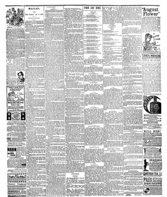 The Postville Review from Postville, Iowa on July 23, 1892 · Page 4