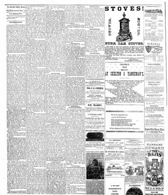 The Postville Review from Postville, Iowa on November 19, 1892 · Page 2