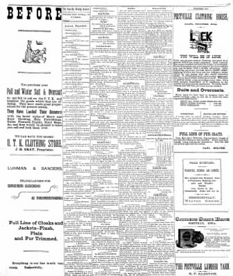 The Postville Review from Postville, Iowa on November 19, 1892 · Page 3