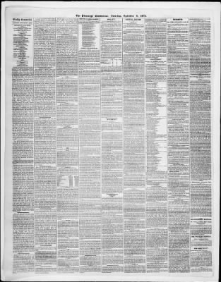 The Pittsburgh Commercial from Pittsburgh, Pennsylvania on September 9, 1871 · Page 2