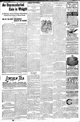 Logansport Pharos-Tribune from Logansport, Indiana on August 27, 1896 · Page 6