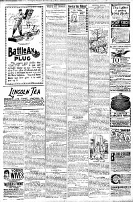 Logansport Pharos-Tribune from Logansport, Indiana on August 29, 1896 · Page 6