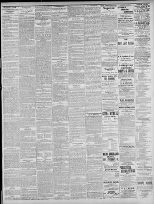 Boston Post From Boston Massachusetts On February 16 1881 Page 3