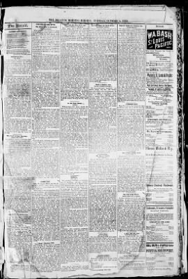 Herald and Review from Decatur, Illinois on October 5, 1880 · Page 3