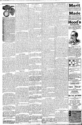 Logansport Pharos-Tribune from Logansport, Indiana on September 2, 1896 · Page 2