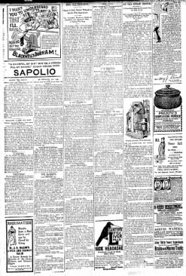 Logansport Pharos-Tribune from Logansport, Indiana on September 2, 1896 · Page 6