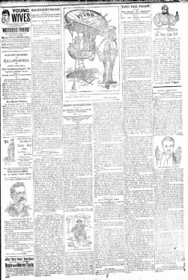 Logansport Pharos-Tribune from Logansport, Indiana on October 23, 1896 · Page 7