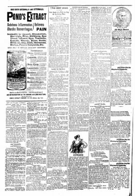Logansport Pharos-Tribune from Logansport, Indiana on March 7, 1894 · Page 2