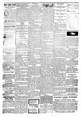 Logansport Pharos-Tribune from Logansport, Indiana on March 10, 1894 · Page 3