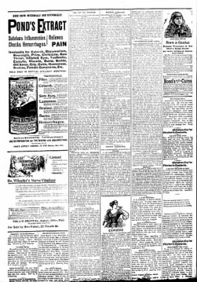 Logansport Pharos-Tribune from Logansport, Indiana on March 14, 1894 · Page 2