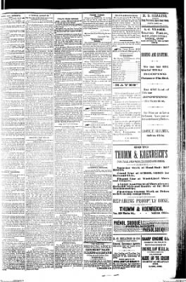 The Salem Daily News from Salem, Ohio on January 16, 1889 · Page 3