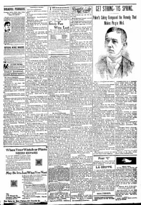 Logansport Pharos-Tribune from Logansport, Indiana on March 17, 1894 · Page 3