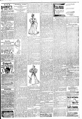 Logansport Pharos-Tribune from Logansport, Indiana on March 28, 1894 · Page 7