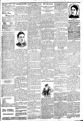Logansport Pharos-Tribune from Logansport, Indiana on April 7, 1894 · Page 2