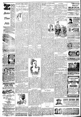 Logansport Pharos-Tribune from Logansport, Indiana on April 7, 1894 · Page 6