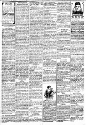 Logansport Pharos-Tribune from Logansport, Indiana on April 8, 1894 · Page 2