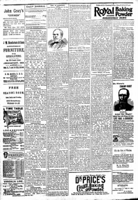 Logansport Pharos-Tribune from Logansport, Indiana on April 10, 1894 · Page 4