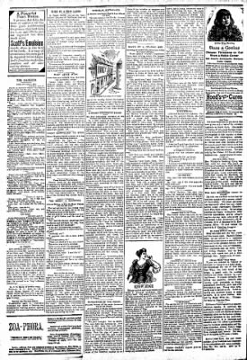 Logansport Pharos-Tribune from Logansport, Indiana on April 11, 1894 · Page 2