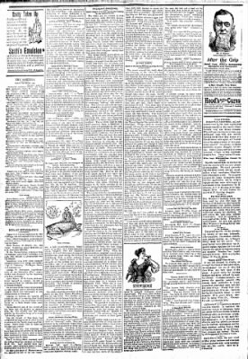 Logansport Pharos-Tribune from Logansport, Indiana on April 18, 1894 · Page 2